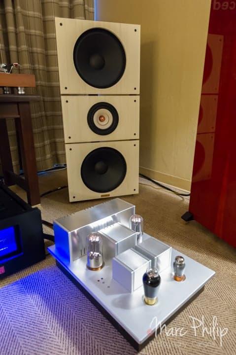 PureAudioProject Trio15TB open baffle et amplificateur Psvane T845