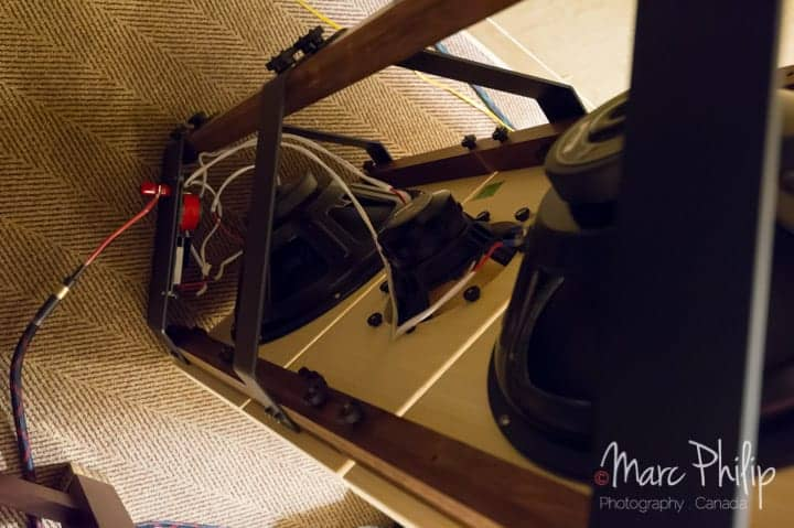 PureAudioProject Trio15-TB Open Baffle